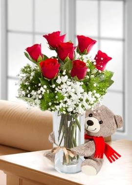 Vazoda Kırmızı Güller Ayıcık