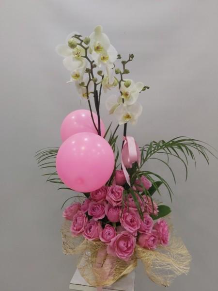 Yeni Doğan Kız Bebek Çiçeği