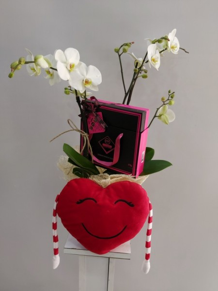 Orkide - Çikolata - Kalp