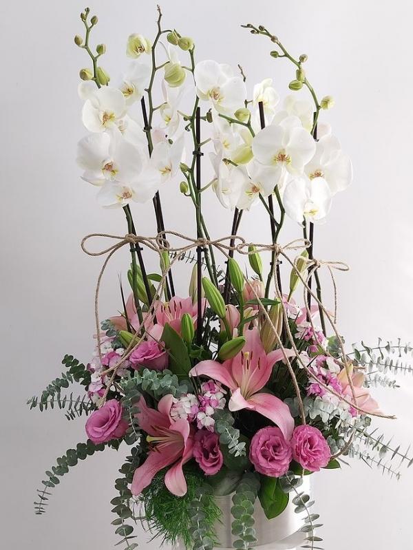 6 Dal Beyaz Orkide Lilyum