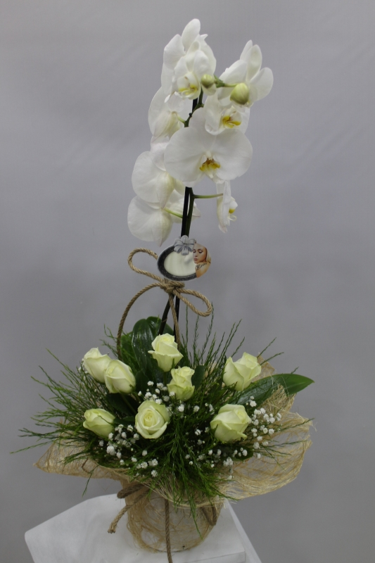 Beyaz Gül Orkide