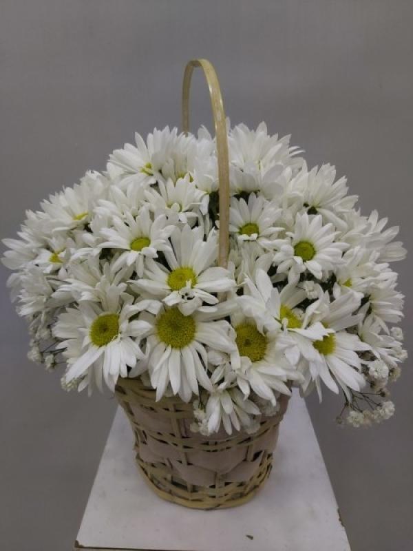 Çiçek Papatya Sepeti