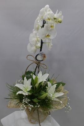 Orkide Lilyum Sepeti