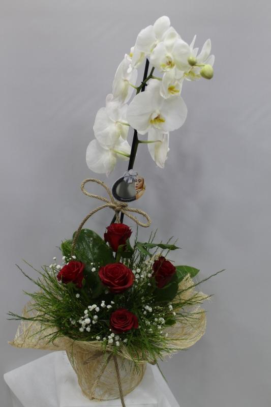 Kırmızı Gül Sepeti Orkide