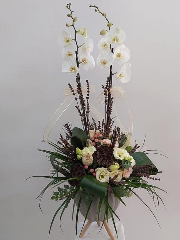 Orkide Butik Çiçek