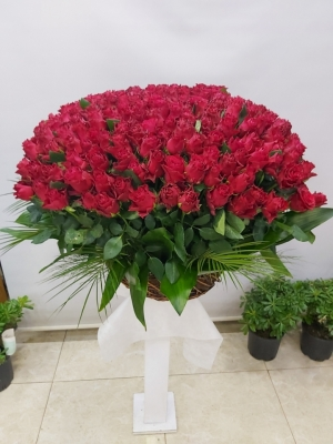 Çiçek Gül Sepeti 250 Kırmızı Gül